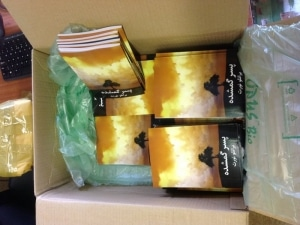 ProdigalSon books